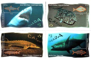 Fish of Canada postage stamp